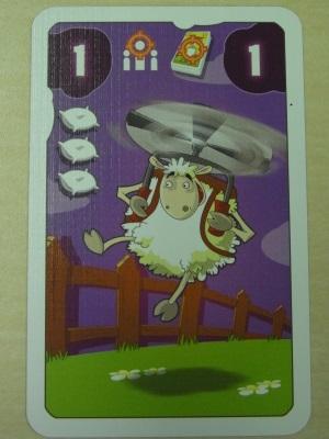 sheepzzz08.jpg